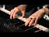 Sally Seltmann - You're So Vain