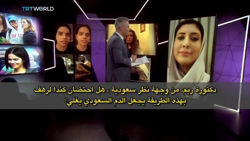 شاهد كيف ردت نائبة سابراك على مزاعم مذيع 16