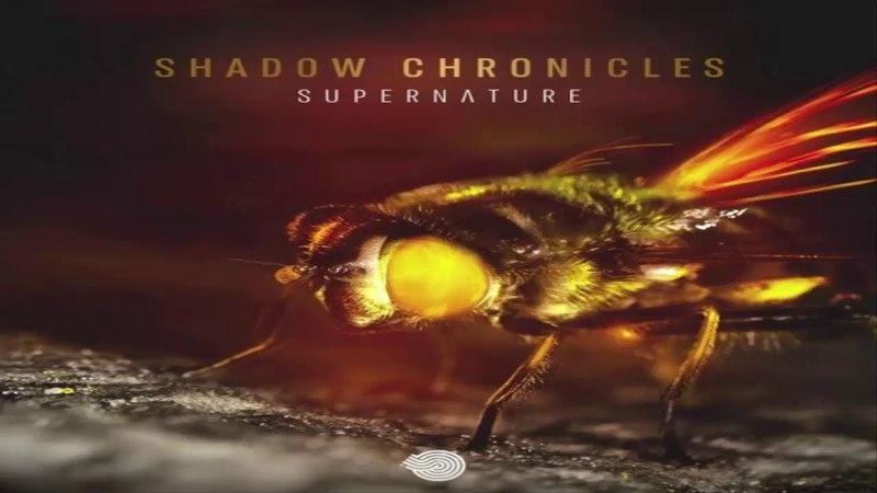 SHADOW CHRONICLES Supernature Original Mix