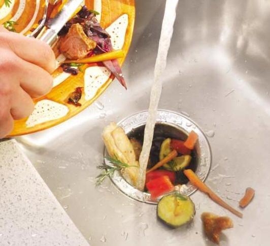 """Ремонт это легко """" Немного истории - как появился измельчитель пищевых отходов"""