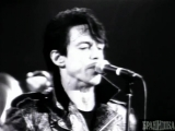 IGGY POP - THE WILD ONE ( REAL WILD CHILD )