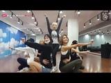 SNSD (GIRLS GENERATION) Lion Heart Dance Practice V Live