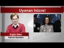 (6) Ergün Diler Uyanan hücre! - YouTube