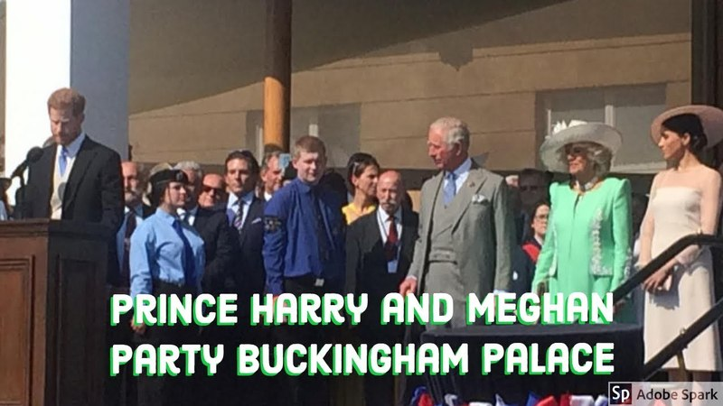 Harry and Meghan - Prince Charles 70th Birthday Garden Party Buckingham Palace