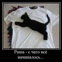 Арман Тынысбеков, 10 февраля 1999, Гродно, id217292867
