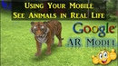 Here is How to Look at Life-Sized Animals in AR through Google Search? [Urdu/Hindi/English Captions]