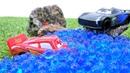 Rayo McQueen en el bosque Coches de carreras Carros para niños