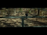 «Бивень» (2014): Трейлер (русский язык) / http://www.kinopoisk.ru/film/786018/