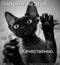 Любовь Иваненко. Фото №15