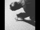 Disvicious1 | The Push Up King🧟♂️ Johnny B....💪🏽