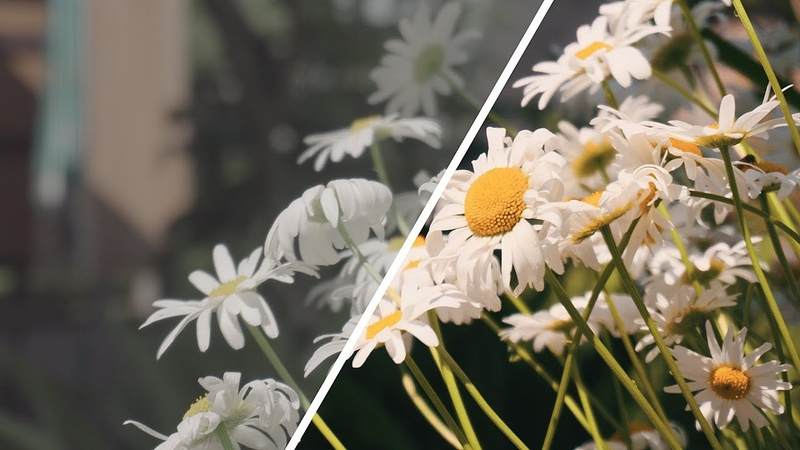 Цветокоррекция в Adobe Premiere Pro (Lumetri Color)