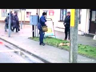 Вот ещё видео, на котором видно, как люди останавливаются возле убитой собаки, которую убили прямо в городе