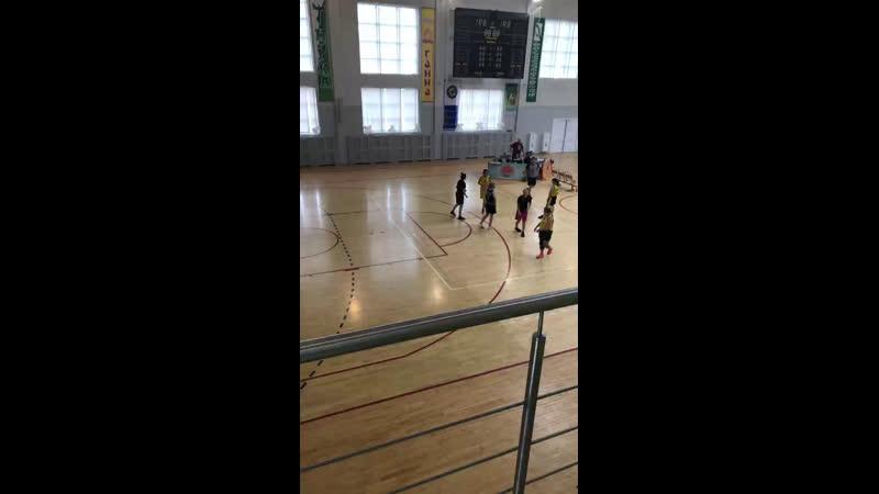 Live: Витебская областная федерация баскетбола
