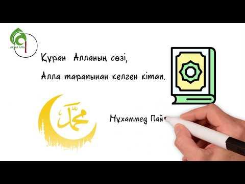 ҚҰРАН ЖАЙЛЫ 20 ДЕРЕК / ЖАҢА РОЛИК / АСЫЛ АРНА