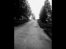 бежим домой 😂