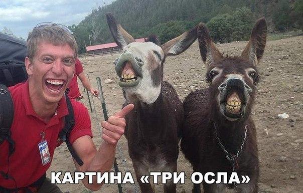 Фото №456241574 со страницы Богдана Ахметзянова