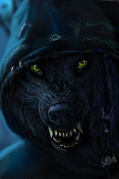Фото волка на аватарку, бесплатные ...: pictures11.ru/foto-volka-na-avatarku.html