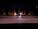 Александр Волчков. Фрагмент балета Лебединое озеро. Вариация принца.