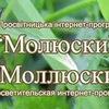 """Просветительская интернет-программа """"Моллюски"""""""