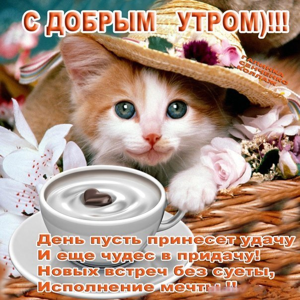 http://cs620518.vk.me/v620518955/aa80/QenabJb1uhM.jpg