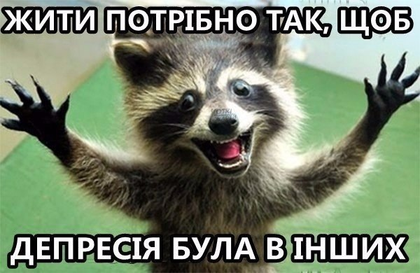 """Не было необходимости допрашивать Януковича как свидетеля по делу """"беркутовцев"""", - Геращенко - Цензор.НЕТ 6324"""