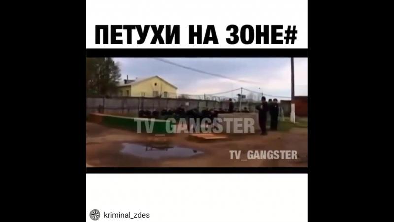 Kriminal_zdes_20180928203910.mp4