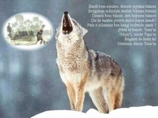 Türk Yagıdan Üzr İstemez [AZERİN]-------[www.atsizcilar.com]