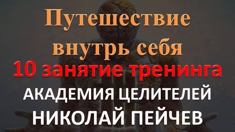 10 занятие тренинга Путешествие внутрь себя Академия Целителей Николай Пейчев