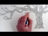 как рисовать дерево карандашом