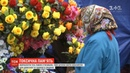 Чим штучні квіти небезпечні для довкілля і здоров'я людей, ТСН.Тиждень з'ясовував