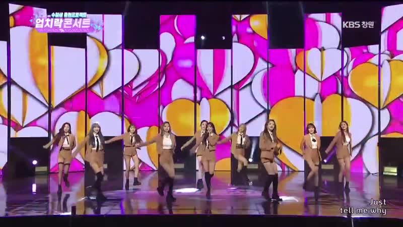 [Performance] 181211 The Up Cheer Concert WJSN - Save Me, Save You, I Wish, Starry Moment