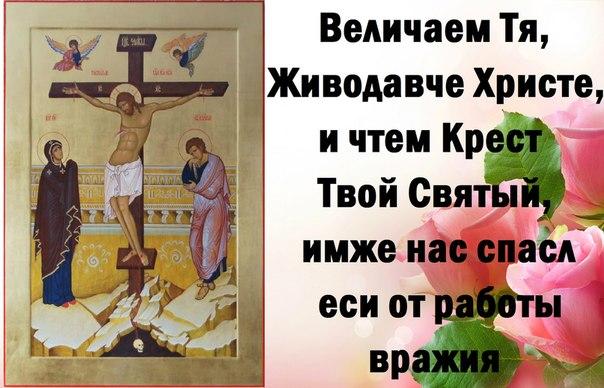 http://cs618425.vk.me/v618425657/c80/OtO2LI_SkUk.jpg