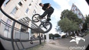 ANIMAL BIKES ROMANIAN CONNECT RAUL JULA (BMX) insidebmx