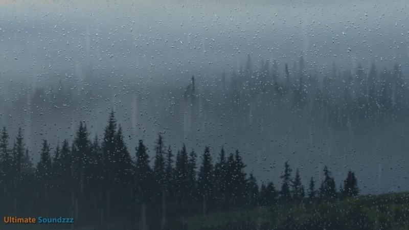 🎧 Mountain Rain Thunderstorm Sleep Sounds - Ambient Noise For Sleep Meditation, @Ultizzz day36