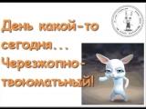 doc9646441_478660797.mp4