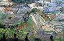Нет, это не картины Ван Гога. Это Китай, провинция Юньнань