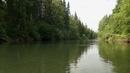 Сплав с рыбалкой между деревнями 23 июня,Хариус нахлыстом