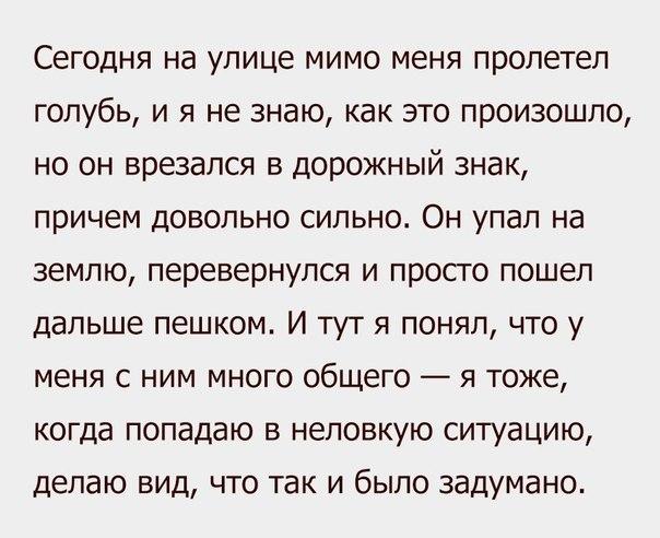 https://pp.vk.me/c7001/v7001898/1819e/rSva9-mKFKc.jpg