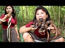 Primitive Technology Finding snake in wild by girl Cooking snake Eating delicious