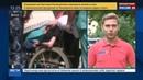 Новости на Россия 24 • Суд освободил осужденного за разбой инвалида Мамаева под подписку о невыезде