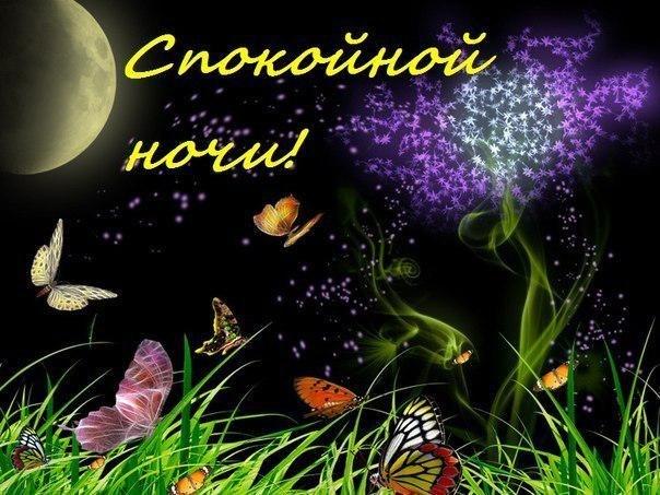 http://cs407828.vk.me/v407828782/3ac3/TOUAmXKGnEM.jpg
