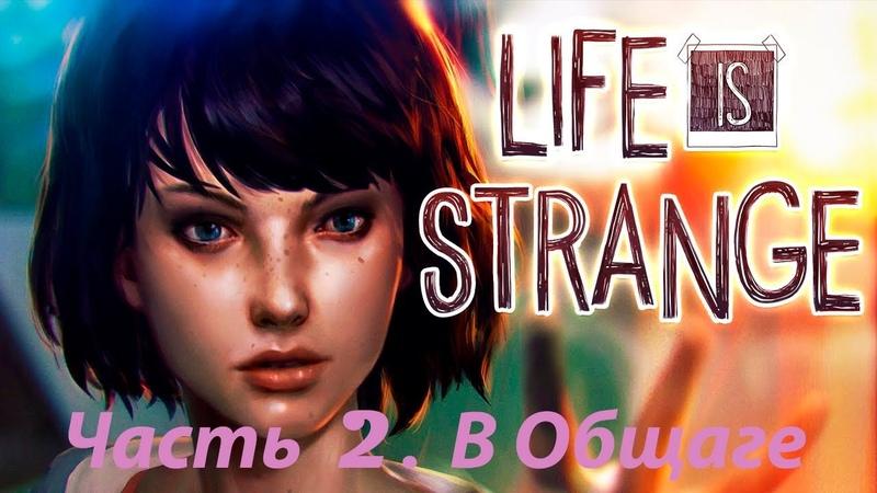 Life Is Strange. Chrysalis. Часть 2. В Общаге