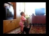Мама-кошка забирает котёнка у ребёнка