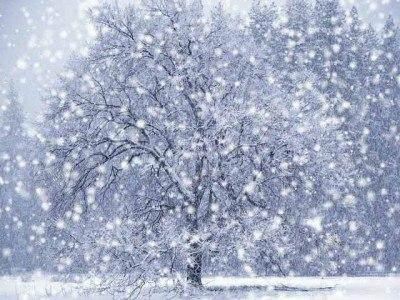 Праздник Первого Снега