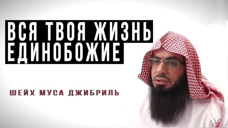 Муса Джибриль - Вся твоя жизнь таухид Единобожие