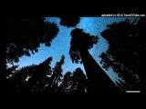 The Echo Brothers feat. Kim Wayman - Key (Jamie Stevens Golden Return Remix)