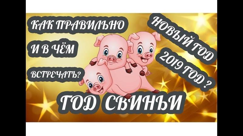 Как и в чём правильно встречать Новый год 2019 Новый год Жёлтой Свиньи по восточному календарю