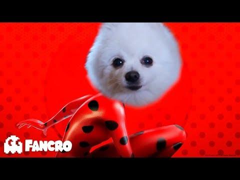 Miraculous Ladybug - Cover Gabe the dog