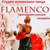 """Фламенко - студия испанского танца """"FLAMINGO"""""""