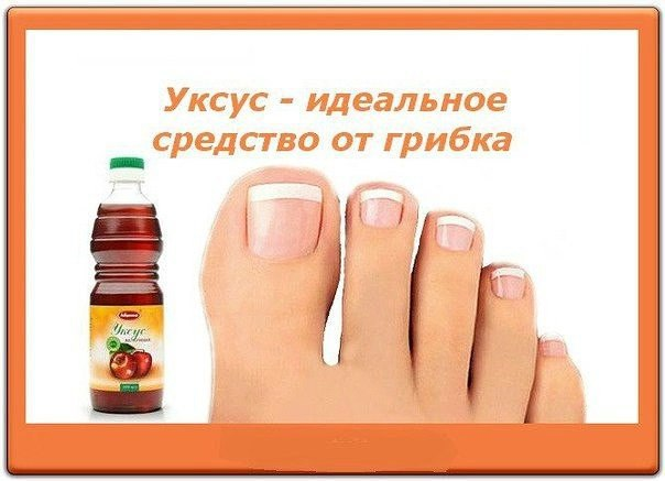 Грибок на ногах лечение корой дуба